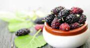 عوارض توت سیاه ؛ مصرف بیش از اندازه توت سیاه چه عوارضی برای سلامتی ایجاد می کند
