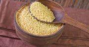 فواید ارزن برای قناری ؛ ویتامین و پروتئین موجود در ارزن مفید برای قناری