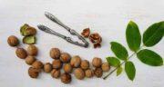 فواید گردو برای بدن ؛ کاهش بیماری های قلبی و خطر ابتلا به انواع سرطان با خوردن گردو