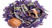 فواید گل گاوزبان در بارداری ؛ آشنایی با خاصیت خوردن گل گاوزبان برای زن باردار