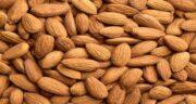 مضرات بادام برای زنان باردار ؛ بررسی مضرات خوردن بادام برای جنین و زن باردار