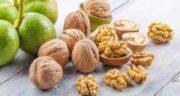 مضرات گردو برای کلیه ؛ بررسی مضرات و عوارض خوردن گردو برای بیماری کلیه