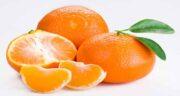 نارنگی کم خونی می آورد ؛ آیا مصرف بیش از نارنگی اندازه باعث کم خونی می شود؟