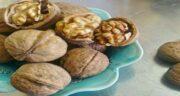 گردو و سنگ صفرا ؛ مصرف منظم گردو باعث کاهش خطر ابتلا به سنگ کیسه صفرا