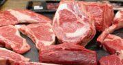 گوشت شتر در بارداری ؛ کمک به رشد جنین با مصرف گوشت شتر