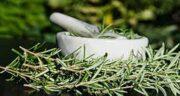 اکلیل کوهی برای دیسک کمر ؛ درمان درد کمر با مصرف اکلیل کوهی
