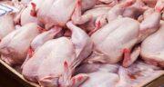 از بین بردن بوی بد گوشت اردک ؛ دستور طبخ گوشت اردک چگونه است