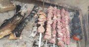 فواید گوشت بره ؛ خواص گوشت بره کبابی در طب سنتی چگونه است