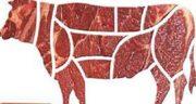 فواید گوشت قرمز گوساله ؛ خاصیت گوشت گوساله از نظر طب سنتی