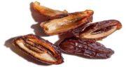 فواید هسته خرما ؛ خاصیت هسته خرما برای درمان سنگ کلیه