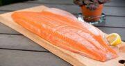 گوشت ماهی برای بیماران کرونایی ؛ ایا گوشت ماهی برای کرونا مفیده