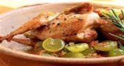 خواص گوشت بلدرچین در طب سنتی ؛ گوشت بلدرچین از نظر طب سنتی