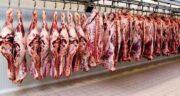 خواص گوشت قرمز برای جنین ؛ تاثیر گوشت قرمز بر جنسیت جنین
