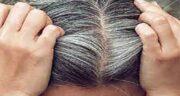 خواص هلیله سیاه برای سفیدی مو ؛ روغن هلیله سیاه برای سفیدی مو