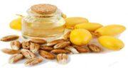 خواص هسته خرما برای دام ؛ فواید مصرف ضایعات خرما برای تغذیه دام