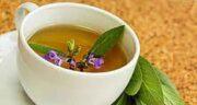 مضرات گیاه مریم گلی ؛ عوارض مصرف گیاه مریم گلی برای زنان باردار