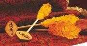 نبات داغ برای اسهال ؛ خاصیت نبات داغ برای اسهال در دوران بارداری