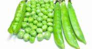 نخود فرنگی در رژیم کتو ؛ ایا مصرف نخود فرنگی در رژیم کتو تاثیر دارد