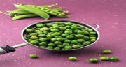 نخود فرنگی و دیابت ؛ ایا مصرف نخود فرنگی برای دیابت مفید است یا نه