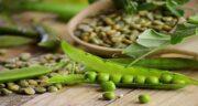 نخود فرنگی و فشار خون ؛ مصرف نخود فرنگی خام برای کنترل فشار خون