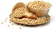 طرز استفاده از لوبیای سویا ؛ دستور مصرف لوبیا سویا برای درمان یبوست