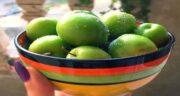 آلوچه سبز برای سرماخوردگی ؛ کاهش علائم سرماخوردگی با خوردن آلوچه سبز