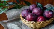 آلو سیاه برای دیابت ؛ تاثیر خوردن آلو سیاه برای تنظیم و کاهش سطح قند خون