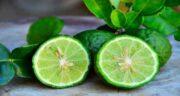 ترنج چیست ؛ همه چیز درباره میوه ترنج و خواص و مضراتی که دارد