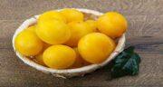 خواص آلو زرد قطره طلا ؛ همه چیز درباره خاصیت دارویی خوردن آلو زرد قطره طلا برای سلامتی