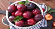 خواص میوه آلو قرمز ؛ تاثیر خوردن میوه آلو قرمز برای سلامتی بدن و پوست