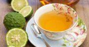 خواص چای ترنج ؛ بررسی خواص درمانی مصرف دمنوش و چای ترنج