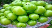 عوارض آلوچه سبز ؛ بررسی عوارض خوردن آلوچه سبز برای سلامتی بدن