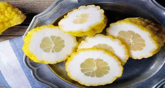 عکس بالنگ ؛ مشخصات ظاهری میوه بالنگ چگونه است