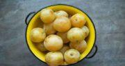 کالری آلو زرد ؛ چه میزان کالری در آلو زرد وجود دارد
