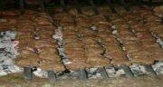گوشت جوجه تیغی برای درمان بواسیر ؛ خوردن جوجه تیغی برای مردان