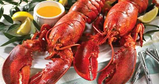 خرچنگ برای سرطان خوبه ؛ درمان سرطان با مصرف گوشت خرچنگ